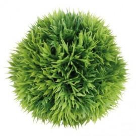 Dekorativní rostlina MECH