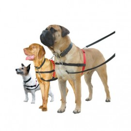 Halti Originál výcvikový postroj pro psa